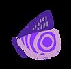 mariposa.png