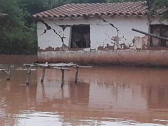 BOLIVIA CBB2.jpg