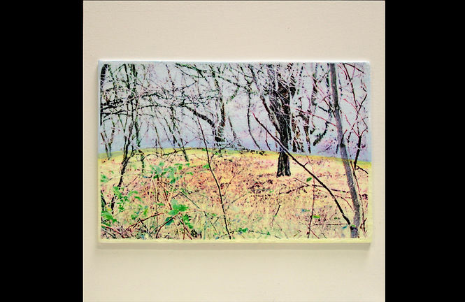 plastic landschap 04.jpg
