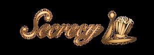 secrecy_logo-min.png