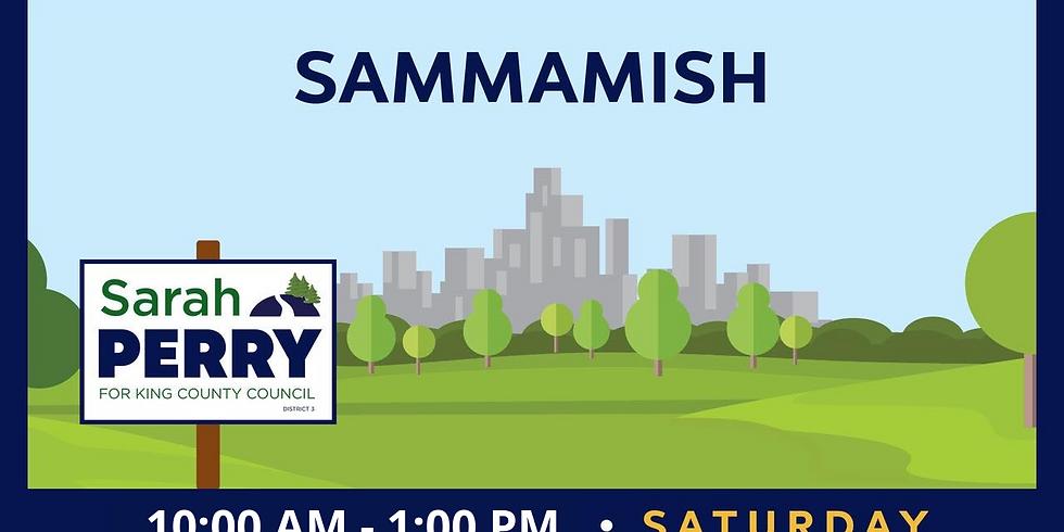 10/23 Sammamish Canvass