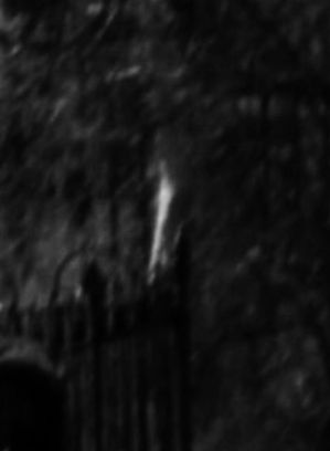 Female Spirit captured entering fenced off gravesite in a cemetery.