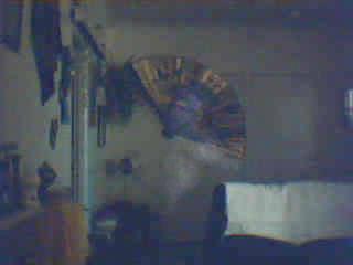 Spirit captured on motion camera