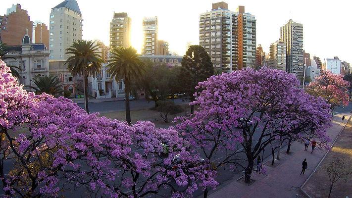 Ciudad-de-Córdoba-Parque-Sarmiento.-ACT.