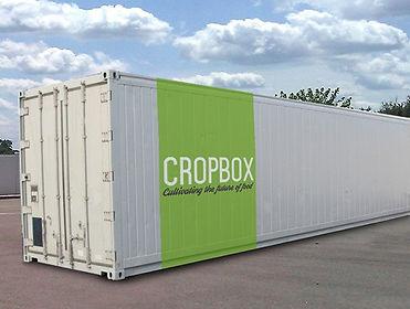 crop-box-container11-600x453.jpg