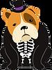SkeletonBulldog.png