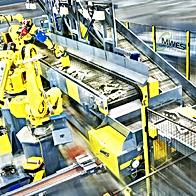 MWES Dynamic Conveyor Picking