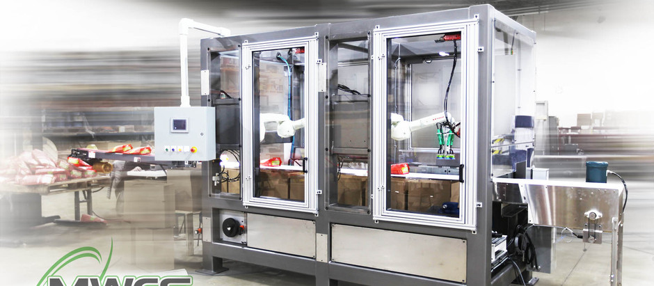 Packaging a Bag Packing Machine for Fast Results