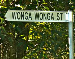 Wonga Wonga