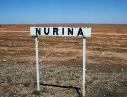 Nurina, Nullabor Plain, WA.