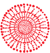 Bayala Databases