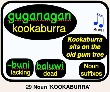29 guganagan KOOKABURRA