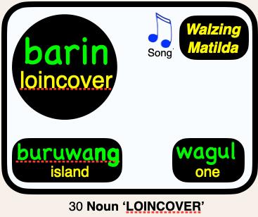30 barin LOINCOVER