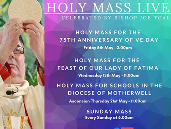 Bishop Toal's Live Streamed Mass Schedule