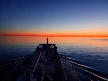 Ramanda in the Baltic Sea