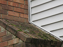 Copy of heavy moss growth on a chimney s