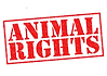 animal rights.png