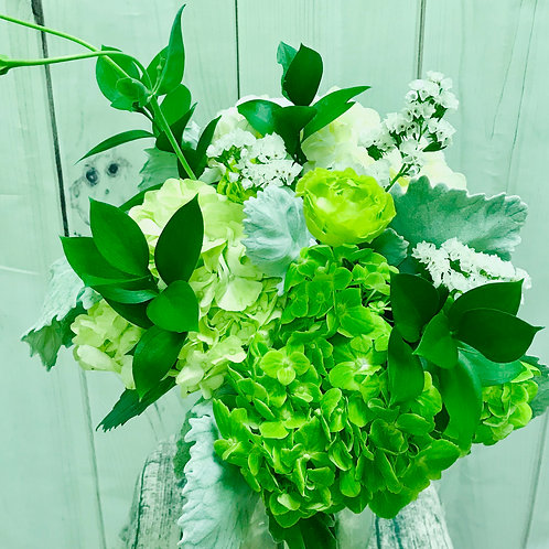 White and green hydrangea