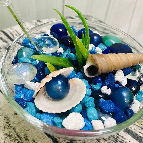 Blue Pearl Vera