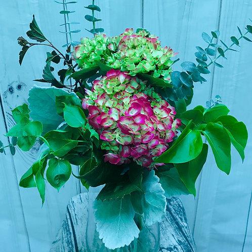 Hydrangea and greens