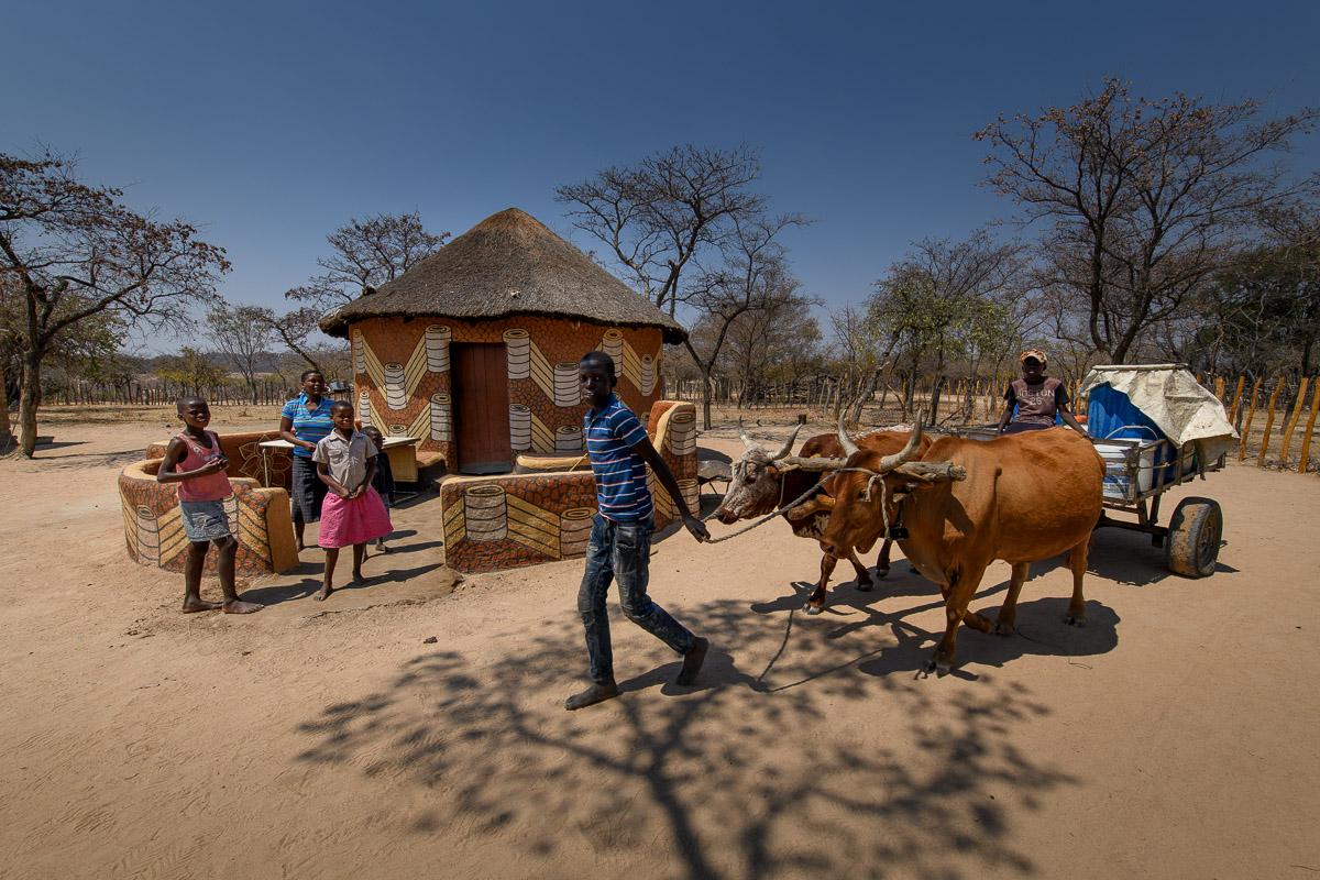 Silibasiso Mthethwa