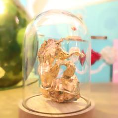 Golden Seahorse