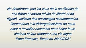 vignette_pape_François_edited.jpg