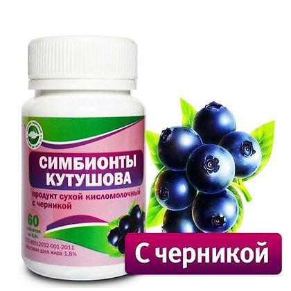 Симбионты Кутушова с черникой