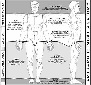 combat_anatomy.jpg