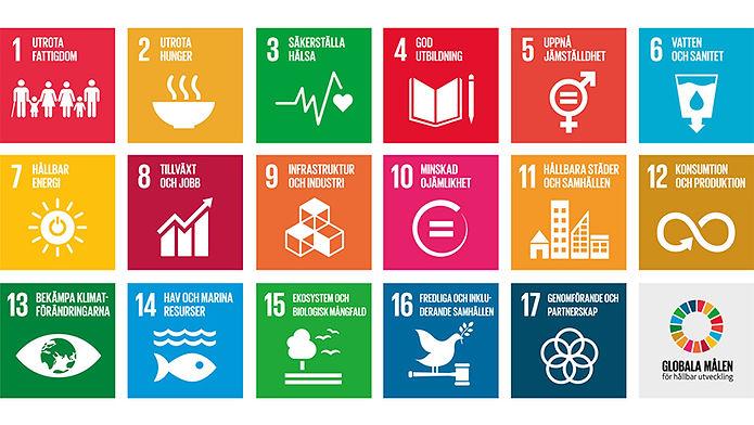 globala målen eco now
