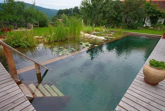 Swimming-Teich.jpg