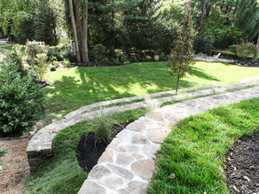 Five Ways To Beautify Your Yard While Being Environmentally Friendly