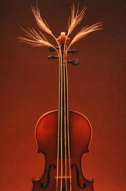 ViolinWheatStrings-Photo