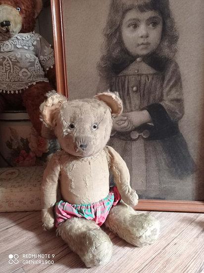 Ravissant ours ancien de collection à adopter