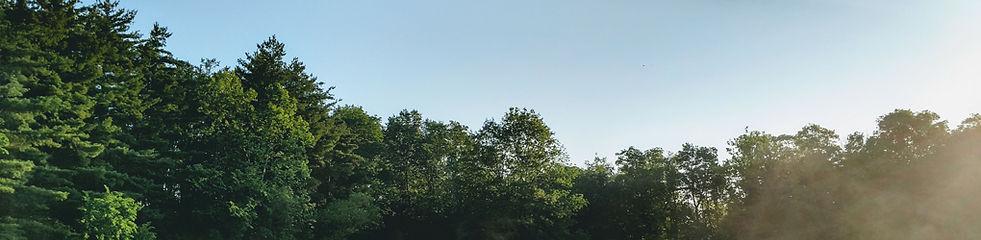 KWAP_Treetops_Banner_1020x250.jpg
