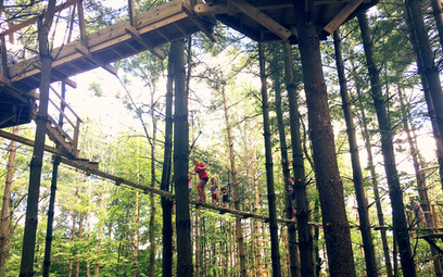 The Canopy Trail at Kirkwood Adventure Park