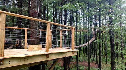 Canopy Trail 3.jpg