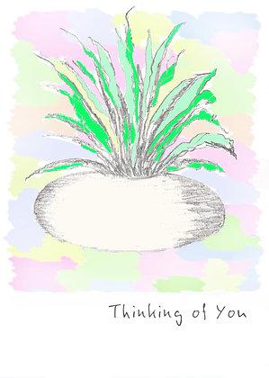 Pastel Plant Card