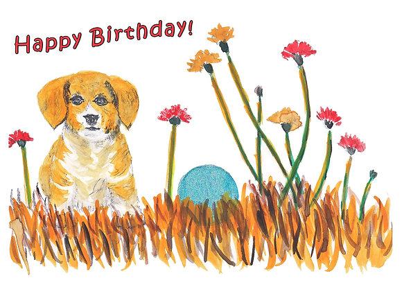 Birthday Dog Card
