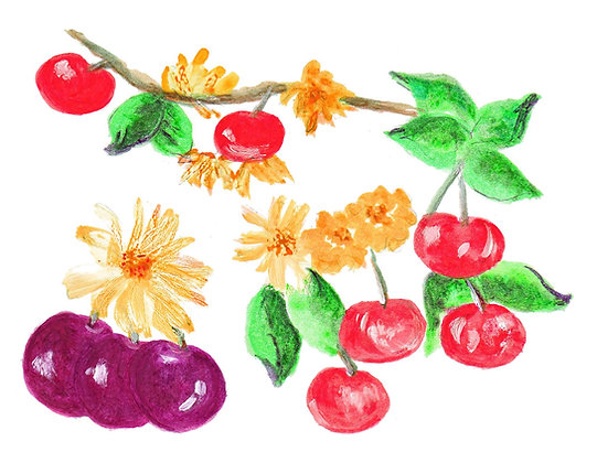 Cherries Notecard