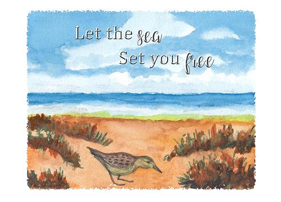 Sandpiper by the Sea Card