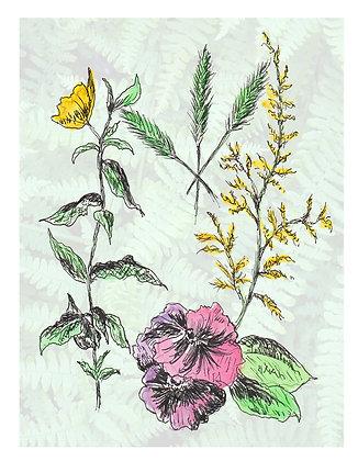 Wildflowers Notecard