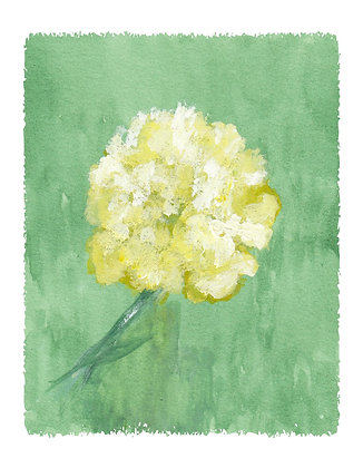 Carnation Notecard