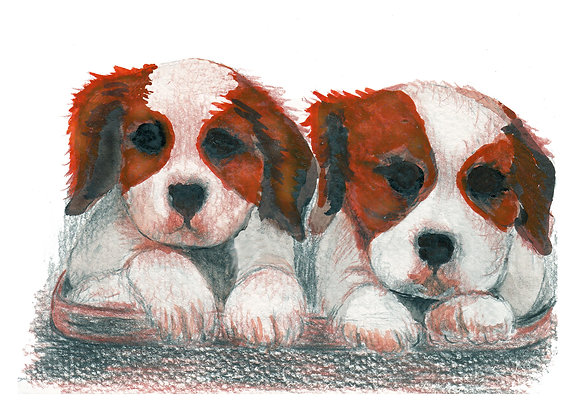 Twin Dogs Art Print