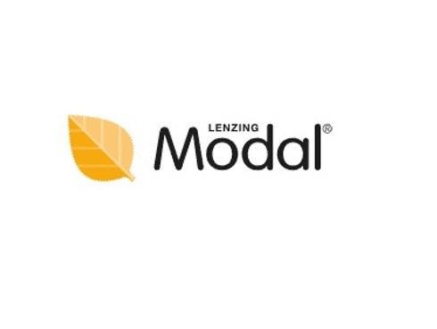 modal-white.jpg