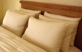 PILLOW CASES 4x. AYURVASTRA ORGANIC COTTON dyed with 105 Ayurveda herbs