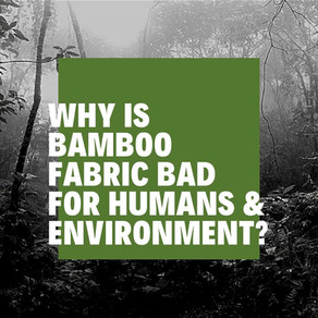 Why is Bamboo fabric so bad for humans & the environment?