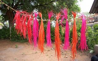 drying hyacinth roots1.jpg