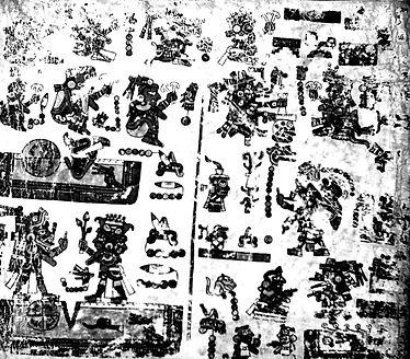 Codex Vienna
