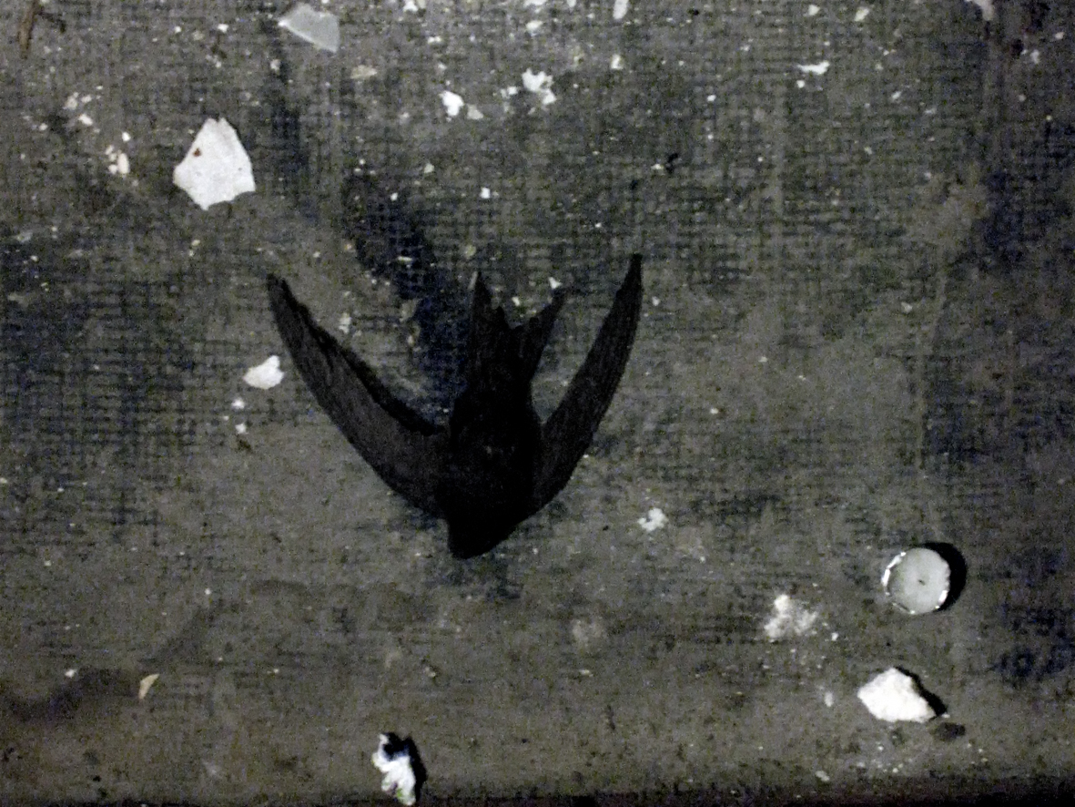 La Mort de l'Hirondelle